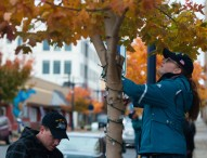 Stennis Sailors Spread Holiday Cheer