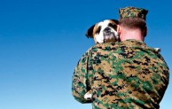 Shelter to Soldier and Griffin Funding matching rescue dogs with veterans