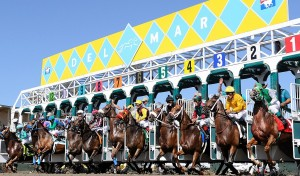 Win Stretch Run Admission to the Del Mar Races!