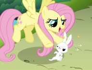 'My Little Pony Friendship is Magic: Fluttershy' floats onto DVD