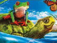 Lionsgate brings families a heartwarming 'Turtle Tale'