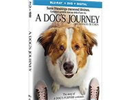 A DOG'S JOURNEY Continues to be Heartwarming on Bluray