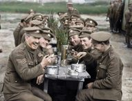 See 'They Shall Not Grow Old' first!