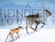 :::Giveaway Time!!!::: Meet Ailo, a newborn reindeer who embarks on an incredible odyssey with the help of his mother.